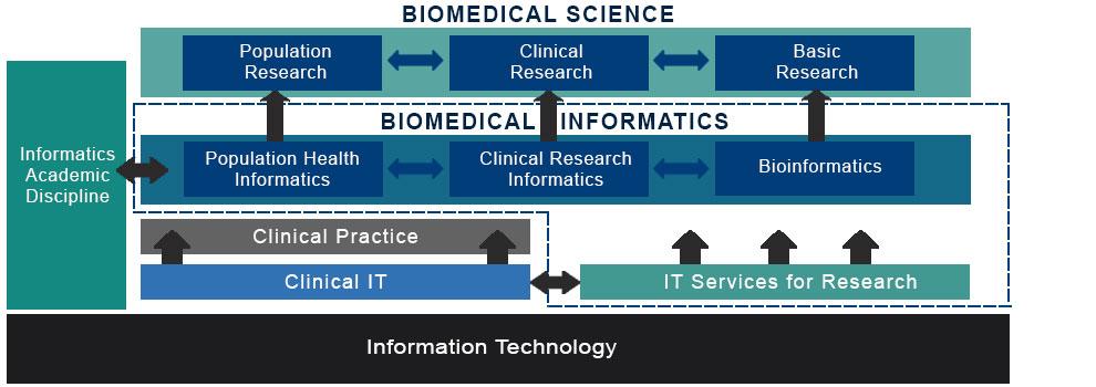 Biomedical informatics chart