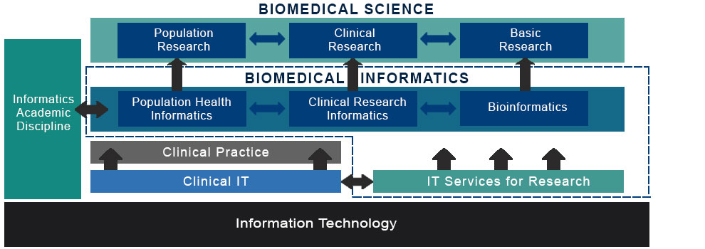 Biomedical informatics chart