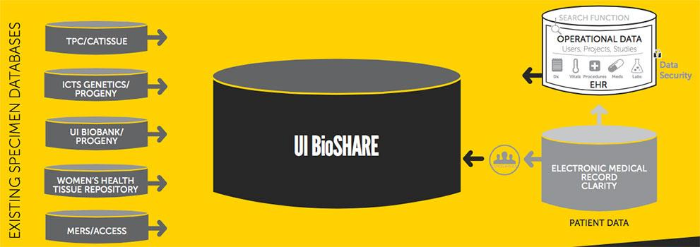 UI BioShare application screenshot
