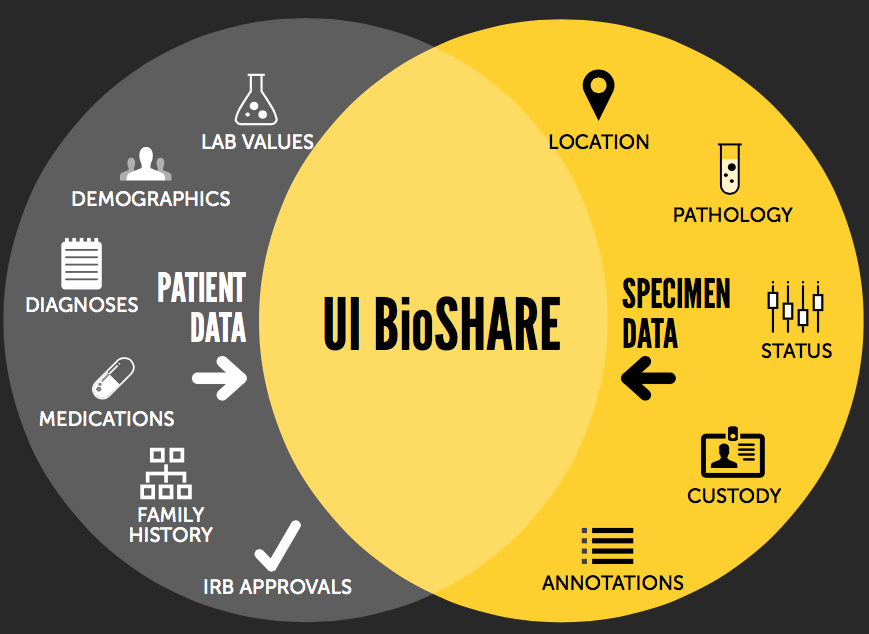 UI Bioshare venn diagram with icons showing patient data and specimen data that can go into UI BioSHARE.